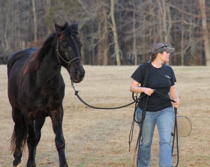 Kate leads Mo out of the pasture